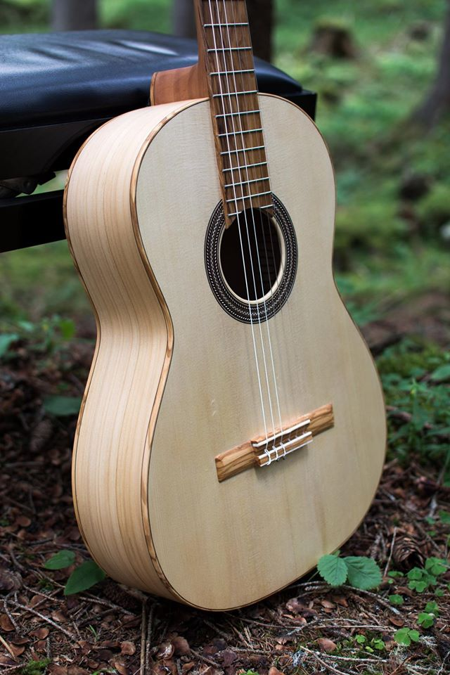 veneto, padova, strumenti musicali, chitarre, chitarre acustiche, chitarre elettriche, chitarre classiche, strumenti a corde